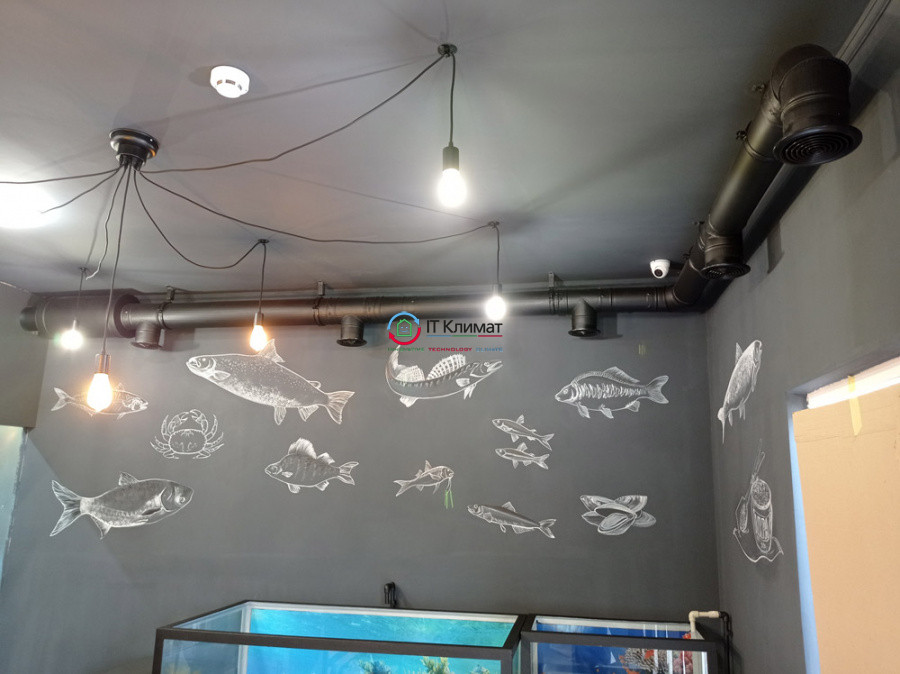 Рибний магазин 50 м.кв. Припливна установка Вентс